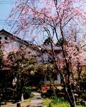 写真:山荘 山岡