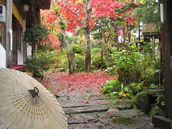 武井旅館 写真