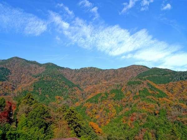 箱根嶺南荘 写真