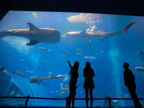 センチュリオンホテルリゾートヴィンテージ沖縄美ら海 写真