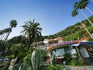 自然に囲まれた絶景の宿 ジャングルパレス
