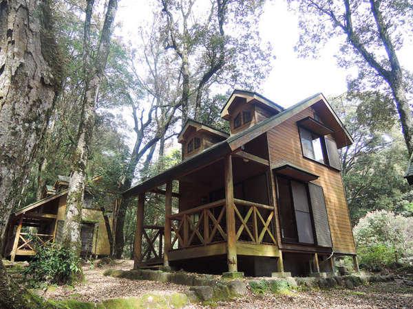 御池野鳥の森公園 御池キャンプ村