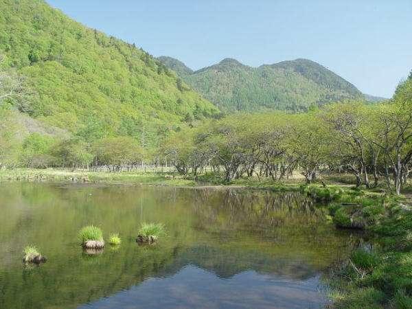 光徳温泉 日光アストリアホテル 写真