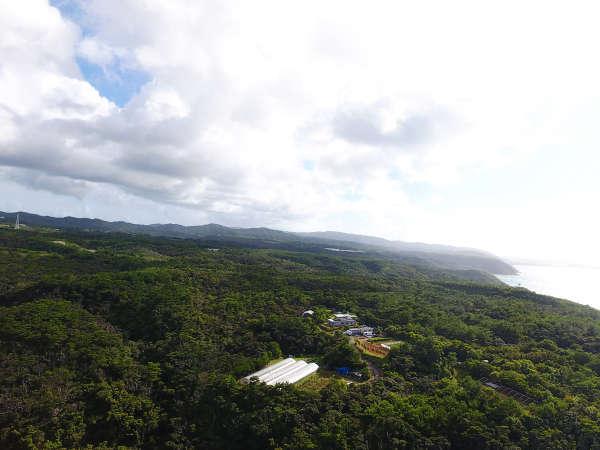 島の上ファーム