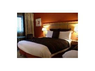 クラリオン ホテル ダブリン リフィー バレー 写真