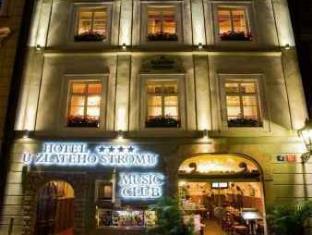 写真:ウ ズラテホ ストロム ホテル