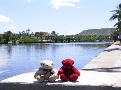 ハワイをぬいぐるみとのんびり旅しました。<br />第2弾です。