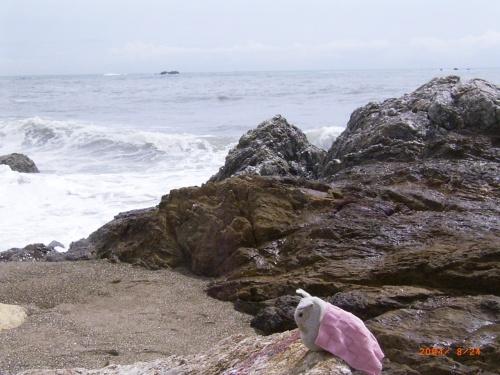 愛知の旅、3日目は渥美半島へ。<br />伊良湖岬~蒲郡と海をいっぱい楽しみました。
