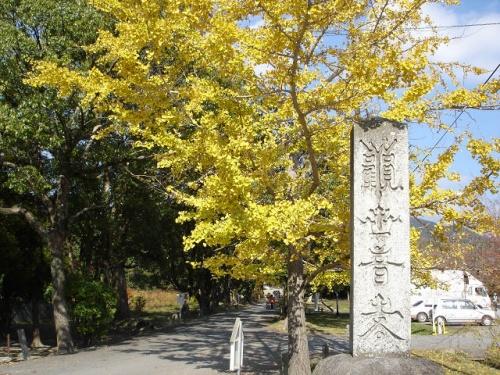 天気が良かったので、太宰府天満宮周辺の紅葉鑑賞に行ってきました。
