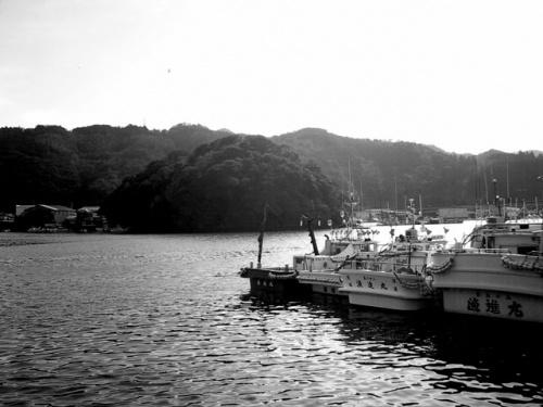 ちょいと一泊二日で足摺岬まで行って来ました。<br />で、携帯カメラのモノクロモードで海を撮って見ました。<br />今のカラー全盛時代、モノが意外と新鮮に見えるから不思議です。<br />なお、携帯カメラで作ったブログは<br />http://vga640.exblog.jp/<br />です。<br />↓眼デジのフォトアルバム(もちろんモノ)<br />http://www.imagegateway.net/scripts/WebObjects.dll/CIGPhoto.woa/wa/a?i=InunMXdCoJ<br />
