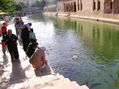 シャンルウルファは聖書ゆかりの地で、宗教的な雰囲気が強いです。女性の姿も西部の都市とはちがってイスラム教徒らしい服装の人がほとんどです。<br /> オトガルに着いたとき、クルド人のおじさんに「うちのペンションに来ないか」と声をかけられました。いろいろな国の人が泊まっているようだったので行ってみたところ、普通の人の住む家をペンションとして使っているようなところでとてもおもしろそうでした。土壁の家ですが、エアコンもついていました。でも、トイレがトルコ式と洋式がそれぞれひとつ、シャワーもひとつでそれらがすべて同じ部屋にあり(しきりがない)、それを旅行者みんなで共有する、ということだったので、ちょっとつらいかな、と思い、お断りしました。そんなわけで、スーツケースをひいてホテル探しをすることになり、一番近くに見つけたきれいな5つ星ホテルに泊まることになったのでした。(最初の言い値にうーんと考えたら、まけてくれました(^^))