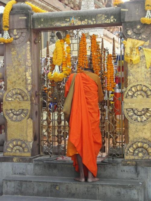 シャカがスジャータに助けられ体制を立て直して、ついてに<br />悟りを開いた場所がここブッダガーヤのマーハーボーディ寺院<br />(大菩提寺)の裏にある金剛宝座です。<br />仏教遺跡の中でも非常に重要な場所、悟りを開いたときの菩提樹<br />は健在で4代目がその場所を守っています。<br /><br />現在、柵が設けられており、基本的には中には入れないのですが<br />今回、運良くはいることができました。<br /><br />スジャータ・レポ-ト <br />http://4travel.jp/traveler/utzutz/album/10052442/<br /><br />「完全版!」最も詳細なインドレポートはここです<br />http://www.geocities.jp/utzutz/india2005/INDO2005.htm<br /><br />