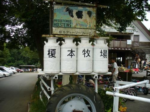 アイスがおいしい榎本牧場
