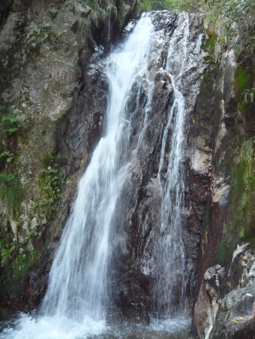 楊梅の滝(滋賀県大津市北小松)