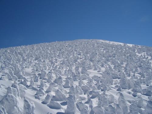 樹氷に感動!(スノーボード&温泉)