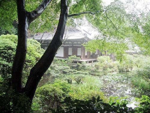 「コスモス寺」と言われる「般若寺」とひっそりとたたずむ岩舟寺<br />(京都府)の静けさを求めての旅。