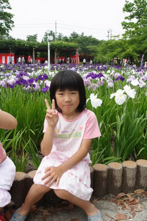 油ヶ淵へ菖蒲の花を見に行って来ました