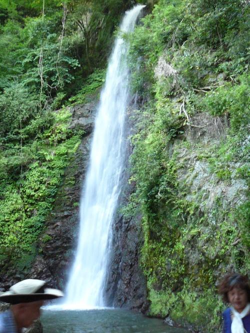伊吹山雲上の花園散歩道日帰り:養老の滝