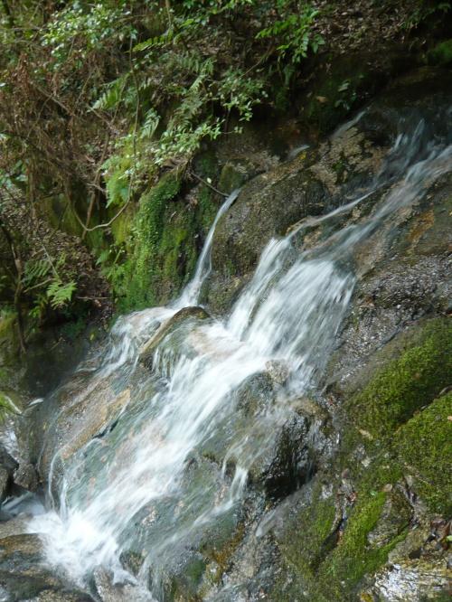 滝紀行◆奈良県山添村の滝(不動滝・八柱神社の滝)