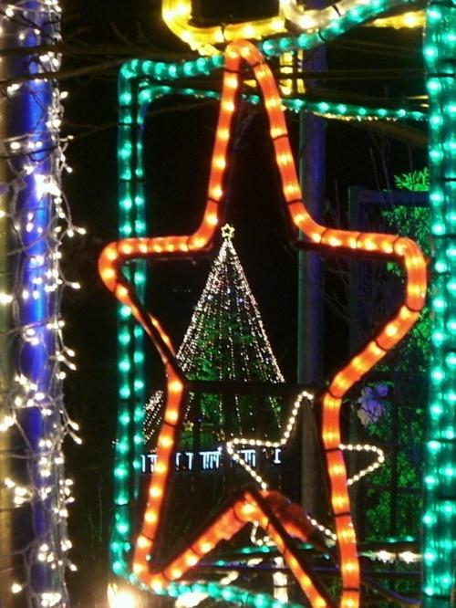 毎年恒例、説明不要なクリスマス。