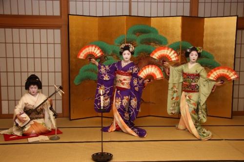 京都の芸妓さん