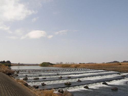 粟原町でバードウォッチング [2009](2)