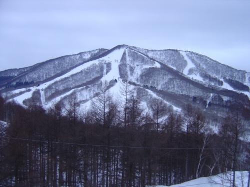念願の斑尾高原スキー場へ!!