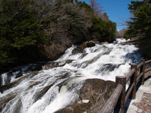 滝が好き!<br />そうです、私は荒々しい流れの滝が大好きなんです。<br /><br />お花を見た帰り道、ロマンチック街道をとおり、<br />関東における滝のメッカ日光にて、<br />竜頭の滝と華厳の滝を見てきました。<br /><br />竜頭の滝<br />http://www.nikko-jp.org/perfect/chuzenji/ryuzunotaki.html<br /><br />華厳の滝<br />http://www.nikko-jp.org/perfect/chuzenji/kegonnotaki.html<br /><br /><br />なんで湯滝は見なかったのか?それは、忘れていたから。<br />ははははは、でも滝が好きなの。
