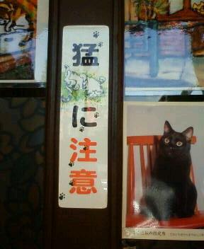 新幹線に乗って東京・上野駅で下車。<br />1泊2日のちいさな旅。<br /><br />現地の友達にガイドをお願いし、<br />大好きな下町のおいしいもの、すてきな場所を求めて<br />猫のように気ままに歩いてきました。<br /><br />