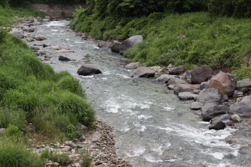 白馬村でバードウォッチング [2009](4) 姫川