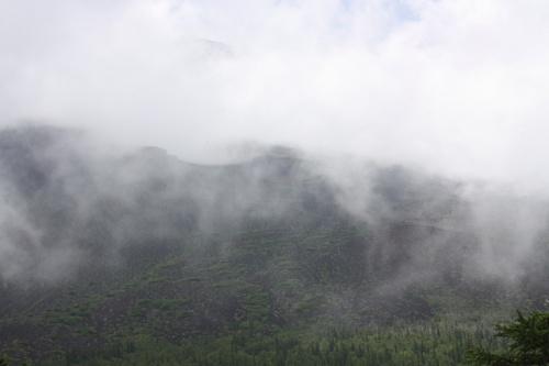 富士山5合目&青木ケ原樹海&鳴沢氷穴で観光&バードウォッチング?