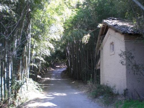 「中山道No8」見聞録(伏見宿~大井宿)
