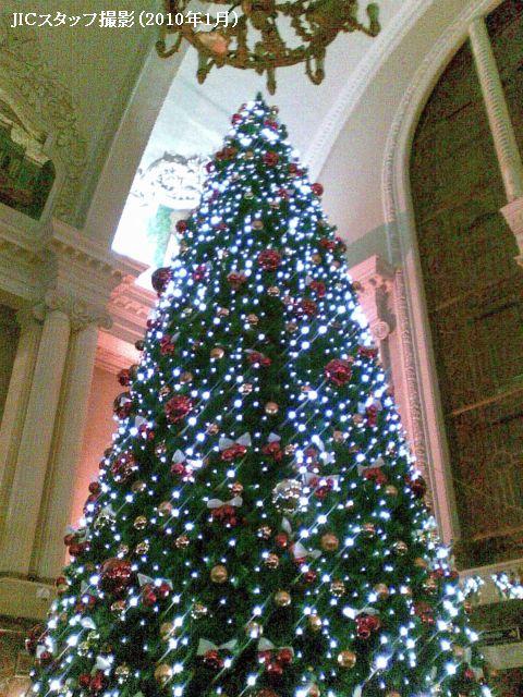 ロシアのクリスマスは、欧米と違って12月25日ではなく、1月7日となっています。なぜかと言いますと、ロシア正教(ウクライナ、ベラルーシも同様)は、旧暦(ユリウス暦)を使っているからです。新暦の1月7日は、旧暦の12月25日となっています。<br /><br /> 私はロシアのクリスマスの前後、ウクライナに旅行に行ってきました。ハリコフ、ポルタワ、キエフ、リボフなどを訪れました。特に話をしたいのは、ポルタワ(中央ウクライナ)とリボフ(西ウクライナ)についてです。ポルタワを訪れたのは、クリスマスの直前、1月6日のクリスマス・イヴでした。伝統的にその時期は短期断食にあたり、クチャという食事を頂きます。主に大麦とけし粒から<br />作られていますが、もっと美味しくするために、砂糖、はちみつ、くるみ、レーズン、シナモンなどを加えます。日本のお米のように、大麦はロシアとウクライナでの豊穣の象徴となっています。<br /><br /> 1月7日はリボフに行きました。西ウクライナには昔の伝統が多く残っています。クチャを食べるとき、そのテーブルの上に、大麦と小麦の穂の束を立てて、テーブルの四隅にはにんにくを置きます。<br />リボフの中心にあるリーノク広場では、多くの人が散歩を楽しんでおり、屋外の舞台では様々なショーが繰り広げられ、クリスマスのお土産やグリューワイン、グロッグといったものが売られていました。面白かったのは、コリャードキ(クリスマスの歌)でした。カフェでコーヒーを飲んでいた時、いきなり12歳ぐらいの男の子が2人カフェに入ってきて、何かの歌を歌いはじめたのです。その歌の内容は次のようなものでした。<br /><br /> ――家畜小屋にキリストが生まれました。みんなは嬉しくなります。この1年、皆さんが豊かになりますように!<br /><br /> その後2人は、カフェいる人々に近づき、「少しでもお金をください」と言っていました。昔はこれくらいの年齢の子供たちにはご馳走をあげるのが普通だったようですが、最近はお金になったようです。<br /><br />http://www.jic-web.co.jp/mow/index.html#letter