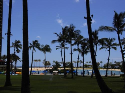 CI18@4.23 p.m.19:50<br />家族水入らずでハワイに行ってきました。<br /><br />パパ・ママ・妹・私の4人。<br />大人になってからそろって旅行に行く機会なんて<br />全然なかったので、いい親孝行ができたかな。<br /><br />全員初でもないので、のんびり。<br /><br />初日はガーリックシュリンプで腹ごしらえ、<br /><br />格安パッケージについていたホテル<br />「アクアコンチネンタルサーフ」から<br />「Hilton GRAND WAIKIKIAN」へ移動、<br /><br />ホテルのプールの前で花火観賞、(近すぎ!笑)<br /><br />キッチンがついているので夜は自炊、<br /><br />おやすみにゃさい〜。