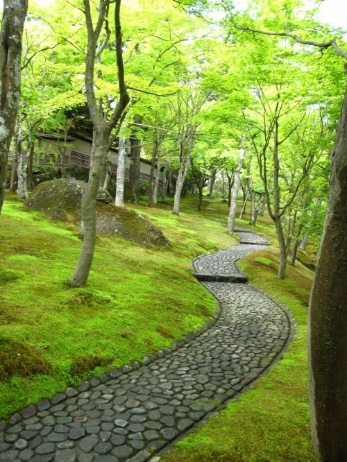 5月の箱根  苔とモミジの庭園にヤマツツジの彩り 【箱根美術館】
