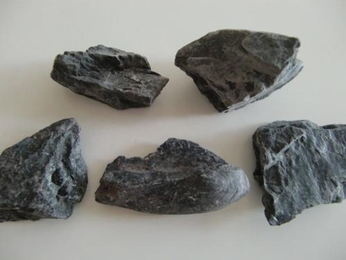 お姉ちゃん(5歳)に、恐竜・化石ブームが到来しています。<br /><br />地球最古の恐竜展(六本木ヒルズ 森アーツセンターギャラリー)や<br /><br />国立科学博物館等々に飽き足らず、<br />化石発掘に出かけることになりました。<br /><br /><br />インターネットで調べて、首都圏から一番近いところで<br />化石発掘できるところは・・・?<br /><br />群馬県の神流(かんな)という町で、<br />化石発掘体験をやっているではありませんか!?<br /><br />群馬県なら行かれそう!<br /><br />最近、レンタカーで回れる自信もついたし!<br /><br />どうせだったら、1泊して群馬サファリパークへも行こう!<br /><br />ということで、普通の土日に、<br />5歳と0歳を連れて1泊旅行に行くという、<br />アクティブファミリーと化して、<br />化石を掘りに行ったのでした。