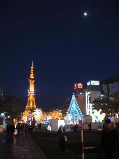 『冬しか会えない北海道 ツアー 1 札幌から小樽』 [札幌]の ...