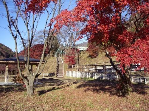 わたらせ渓谷鉄道の沢入(そうり)駅と、隣接する「沢入駅ふれあいパーク」での紅葉狩りです。<br /><br />わたらせ渓谷鉄道のホームページにある「わたらせふるさと散策マップ」によると、沢入駅は、桜、紫陽花、紅葉と、それぞれの季節が楽しめるとのことですが、今回は紅葉狩りです。でも若干遅かったかもしれません。<br /><br />表紙の写真は、「沢入駅ふれあいパーク」から、沢入駅方向を見たもので、中央の階段を上がったところに沢入駅の跨線橋が見えます。