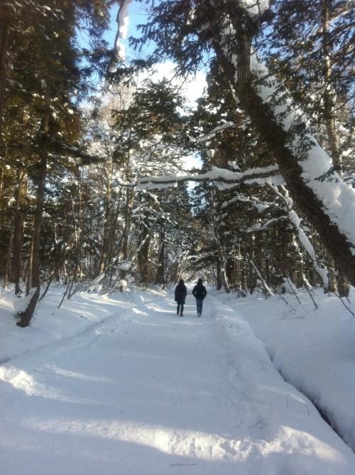 新潟の実家へ帰省した帰りに戸隠神社へ初詣に行きました。<br /><br />雪の戸隠は夏とは一味違った魅力がありました^^<br /><br />最近はパワースポットブームや吉永小百合さんのCMの効果で激混みだと聞いていましたが、雪のせいか程よい混み具合で良かったです。<br /><br />新年早々清清しい気持ちで参拝できました。