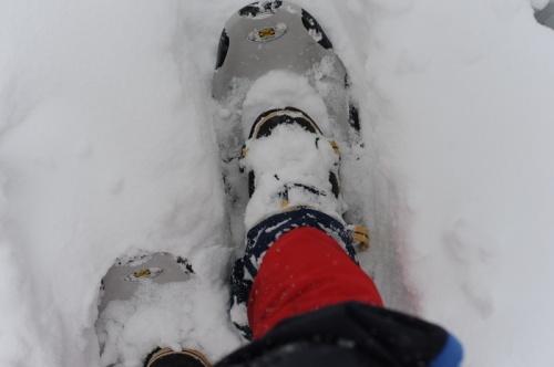 裏磐梯で初めてのスノーシュー