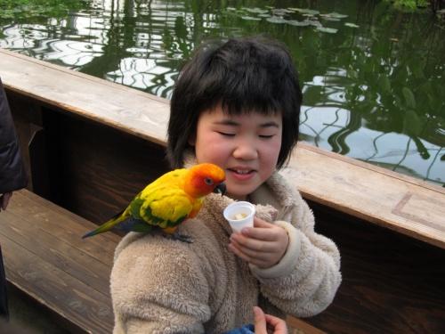 「掛川花鳥園」と「ならここの湯」~♪(^o^)