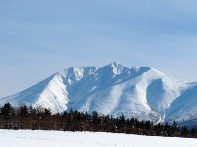 ご機嫌なお天気の日に<br />ど〜ん!と現れる、美しい山並みの十勝岳連峰。<br /><br />噴煙を上げる十勝岳から<br />左側に<br />美瑛岳、美瑛富士、石垣山、ベベツ岳…<br /><br />そして、左端の、変わった形をした山が…<br /><br />そうです! ワタシの大好きな<br /><br />オプタテシケ山 (2011m)<br /><br />丘から山が、くっきり、ハッキリ、見えた日は<br />「オプちゃん」の追っかけだ〜!<br /><br />角度によって、いろんな顔に見えるオプちゃんを<br />アップで見たり、丘越しに眺めたり…<br /><br />今回、最終日にようやく姿を現してくれた<br />オプタテシケの特集です。