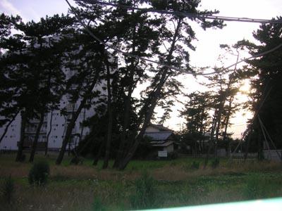 市川の腕木門7(新田 平田)