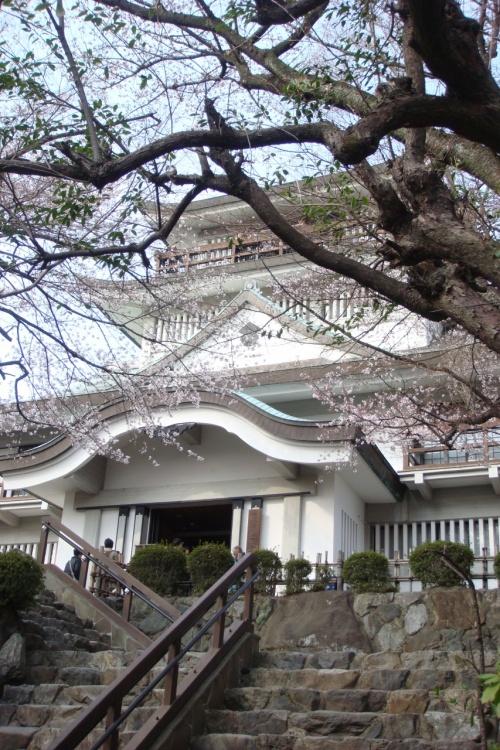 2011 春 お城めぐり第二弾 ★小牧城★