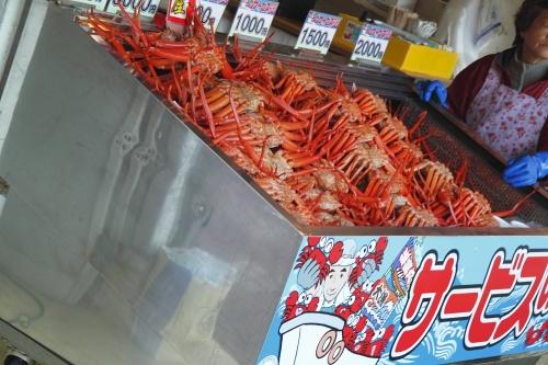 新潟県 日本海を望みながらカニを食い倒す!