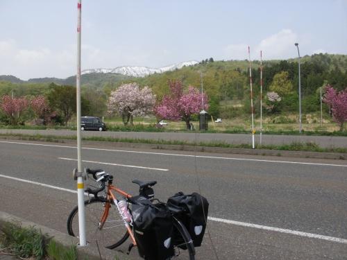 に僕は東京・三鷹の自転車屋 ...