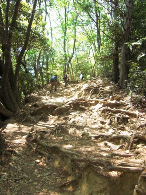 東京/山ガール始動!高尾山稲荷山コースではじめの一歩