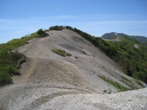 「花の百名山をあるく」 大佐渡縦走トレッキング その②  ドンデン山→金北山コース