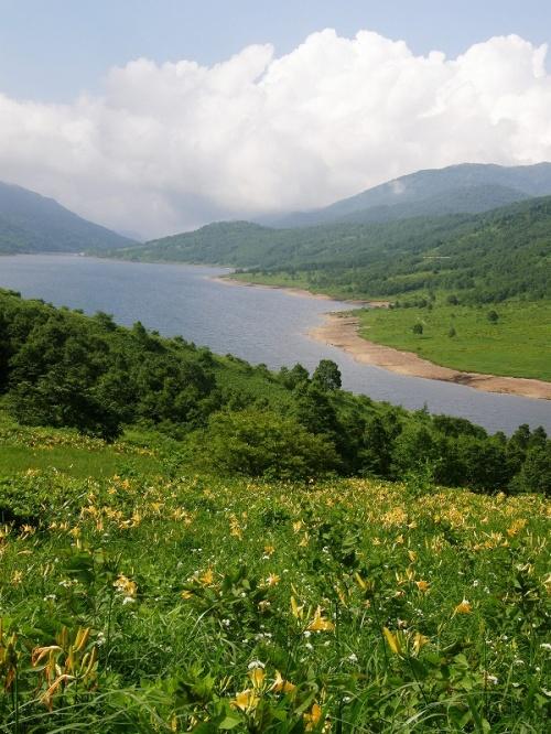 野反湖・エビ山にキスゲや山野草を楽しみながら登る