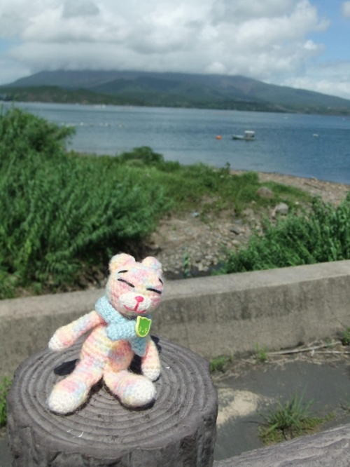 鹿児島、志布志港から桜島へGO。<br />ほそ~い山道を越えたら、さんかく桜島が見えてきました。<br />ちょうどランチタイムだったので、近くの黒酢レストランでうまうまランチです。